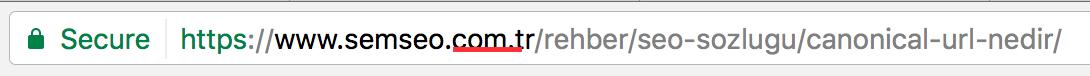url domain uzantısı