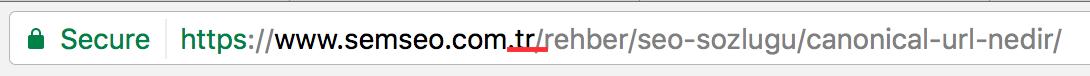 URL ülke uzantısı