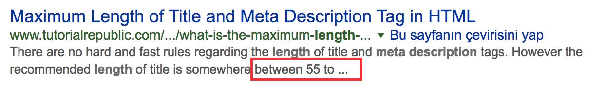 uzun meta description örneği