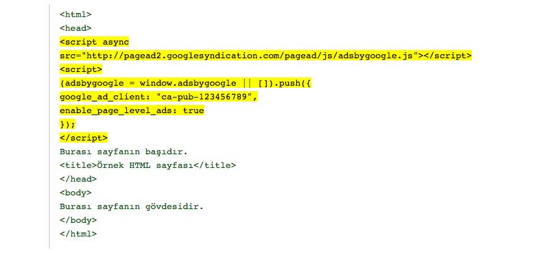 Google Adsense kodu ekleme