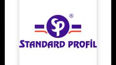Standard Profil SEO ve SEM çalışmaları