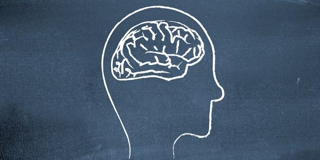 google rank brain ne işe yarar?