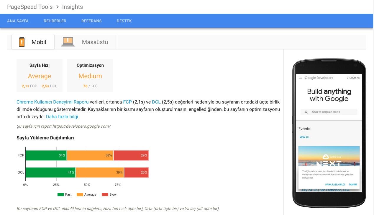 PageSpeed Insights Sonuç Ekranı