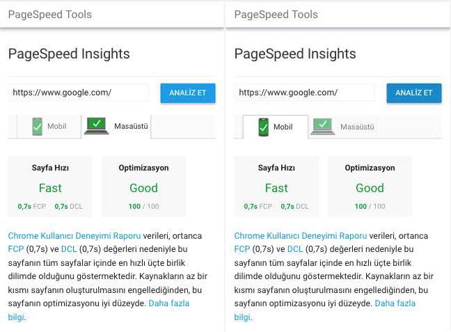 google.com.tr için PageSpeed Test sonucu