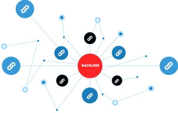 Backlink Profili