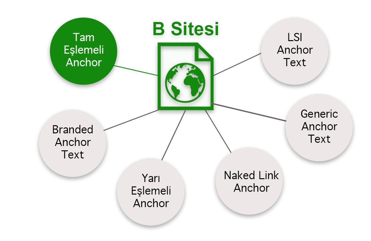 Doğal bir backlink profilinde anchor text dağılımı